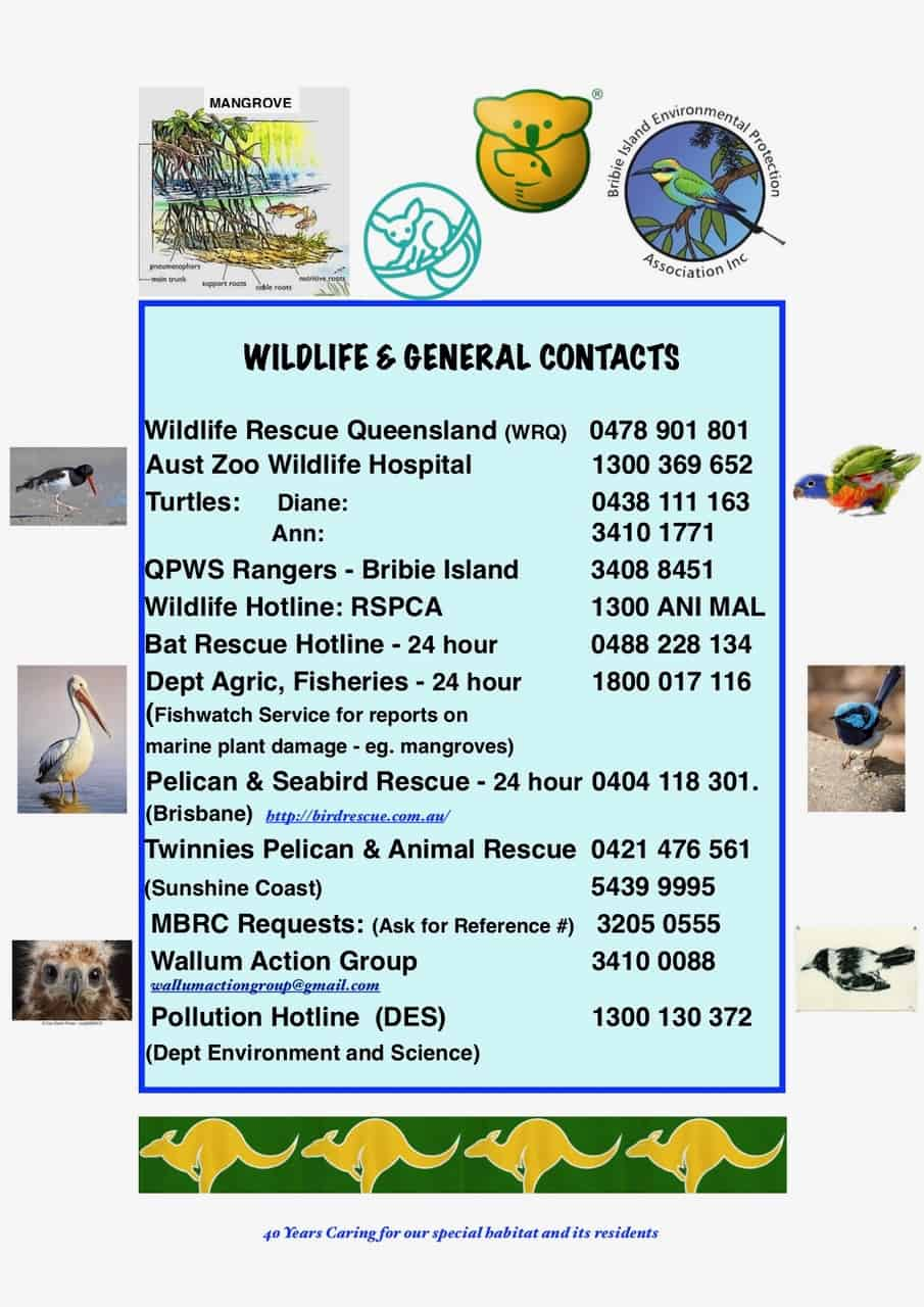 BIEPA Wildlife & General Contacts